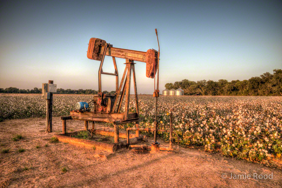 Pumpjack in Cotton