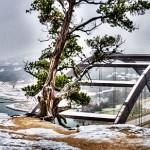 360 Bridge 2010 - v3